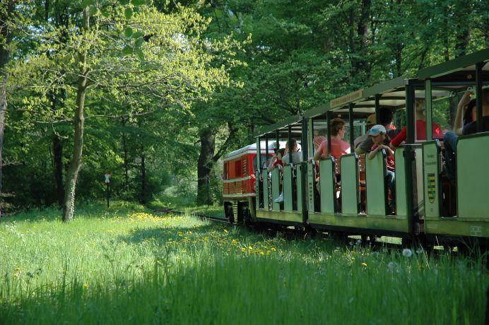 Parkeisenbahn im Großen Garten (c) www.schloesserland-sachsen.de